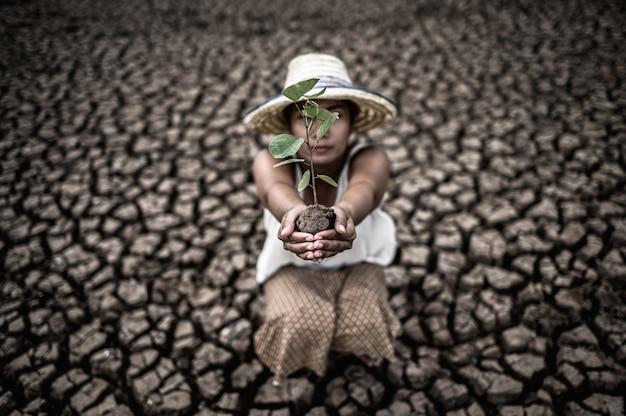 地球温暖化の中で乾燥した土地に苗木を持って座っている女性。