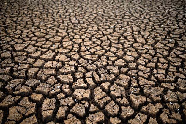 乾燥した割れた地面のある乾燥した土地、地球温暖化