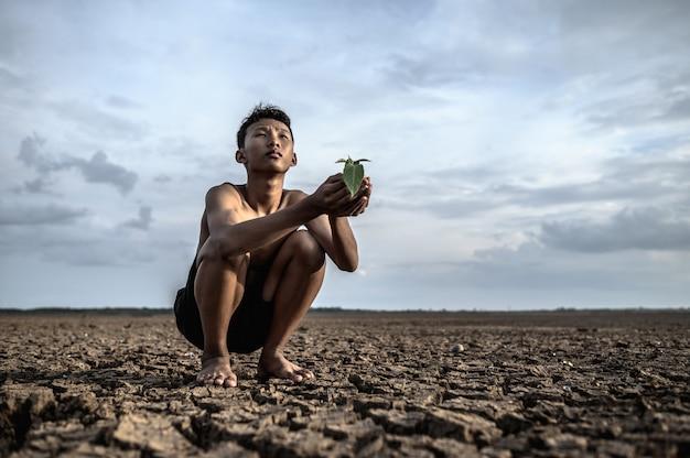 男性は手に座り、乾いた地面に苗木を持って空を見上げます。