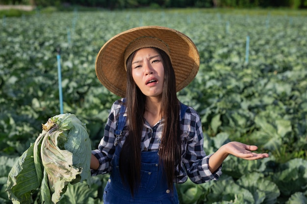 腐ったキャベツに満足していない農業の女性。