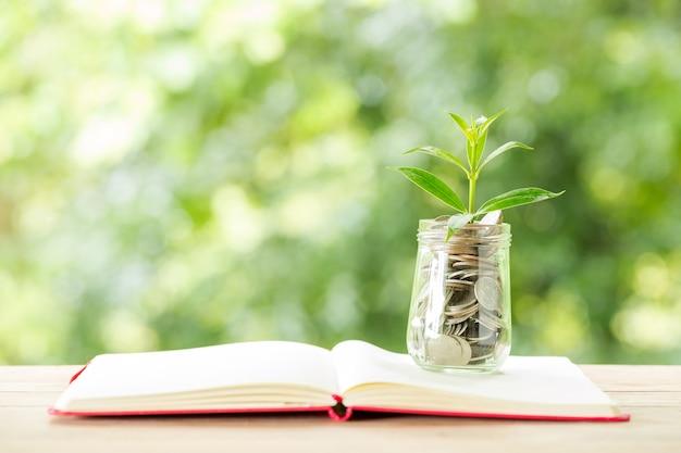 ぼやけた自然のガラス瓶にコインから生長する植物