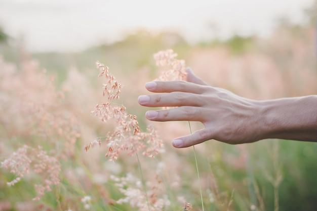 若い指の緑の腕に触れる