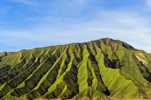 晴れた日に緑の山のはしご