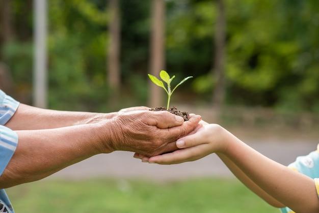 高齢者と植物を保持している子供たち