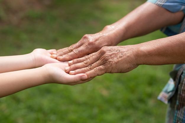 祖母と孫娘が手を取り合って