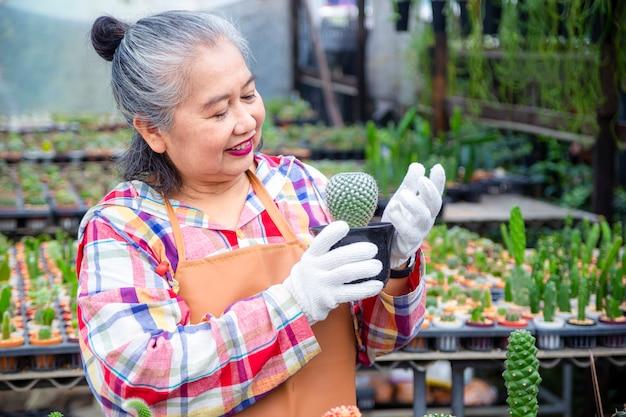 サボテンの木の整合性を見て高齢者の女性