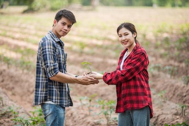 男性と女性が立って苗木を保持しています。