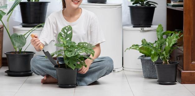 女性は座って家の中に木を植えています。