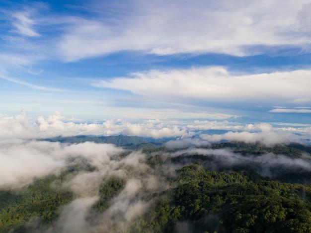 霧の谷に見える山の頂上。霧の谷の山の景色。美しい自然。