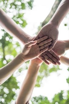 チームの学生チームワークのスタックの手を一緒に閉じます。スタートアップ、成功の概念。