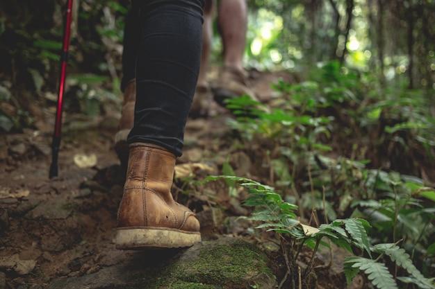 女性のハイキングブーツ