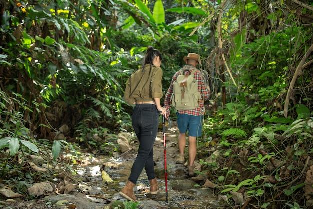 男性と女性の観光客が森を楽しんでいます。