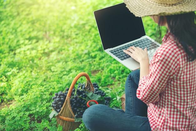 ぶどう農家はオンライン市場ぶどうを売って満足している