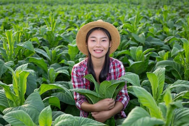 農業専門家の女性は分野でタバコに見えます。