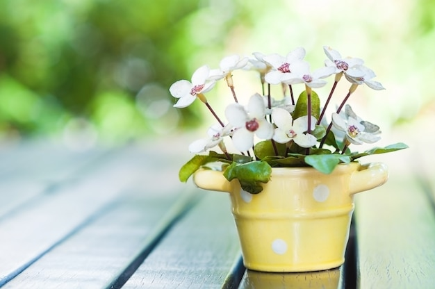 Красивый цветочный горшок на столе для поздравительной открытки