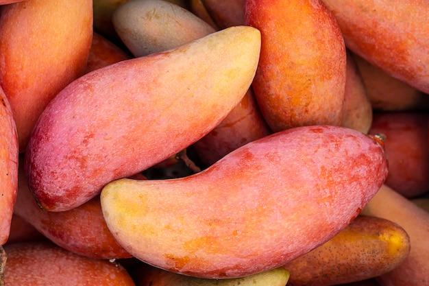 熟した新鮮な赤いマンゴーを販売する準備ができて - フルーツの背景の概念