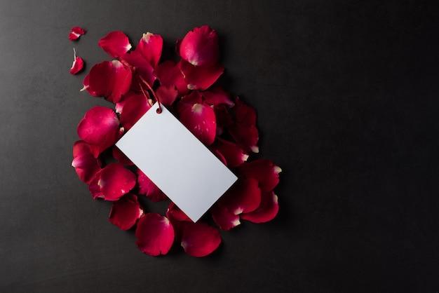 白空白の白いカードと赤いバラ
