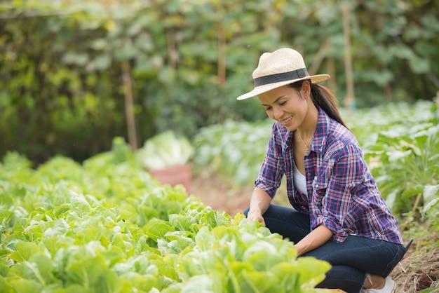 Фермеры работают на китайской капустной ферме
