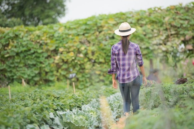 農家は野菜畑で働いています