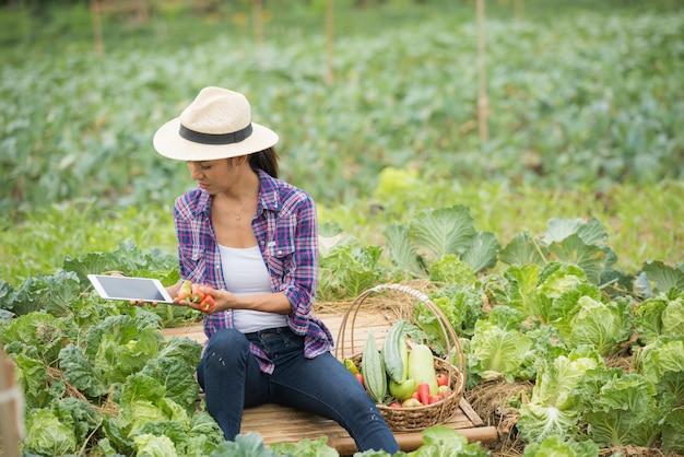農家は野菜畑で働いています。デジタルタブレットを使用して野菜をチェック
