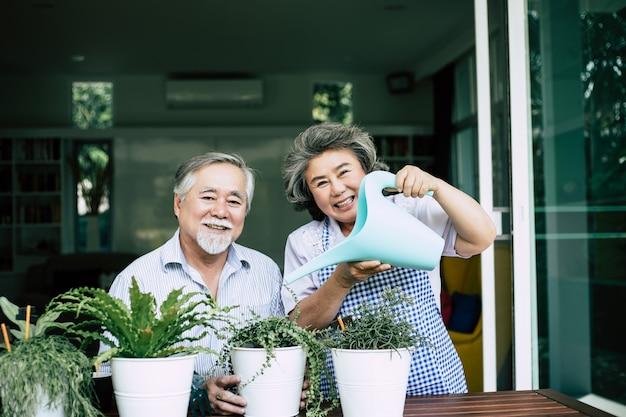 年配のカップルが一緒に話すことと鉢に木を植えること。