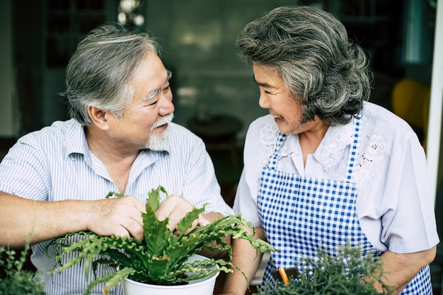 Пожилые пары разговаривают вместе и сажают деревья в горшках.