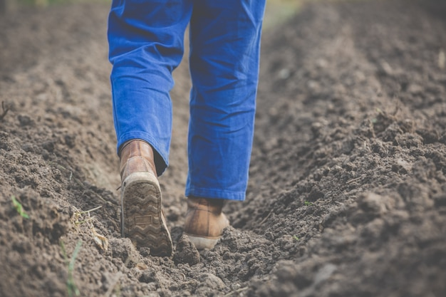 女性農民は土壌を研究しています。
