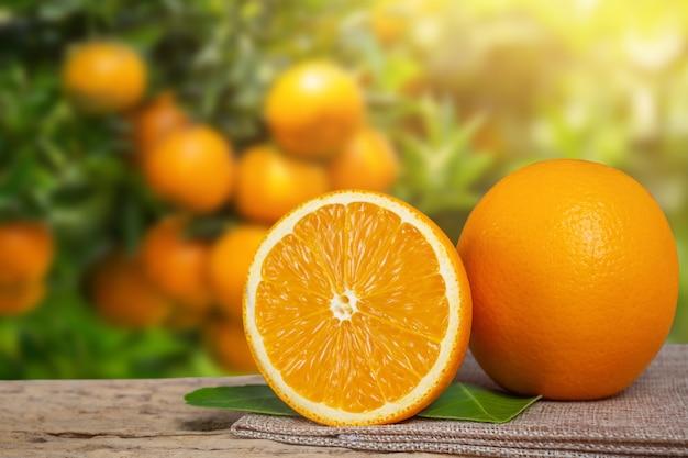 庭からオレンジ色。