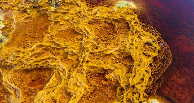 太陽に照らされ、ミネラルによって赤い水に囲まれた黄色のストロマトライト