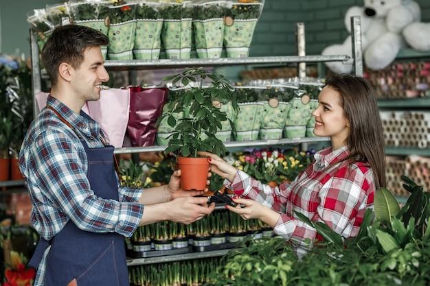 庭で植木鉢を買う労働者男花屋と顧客のコンセプト