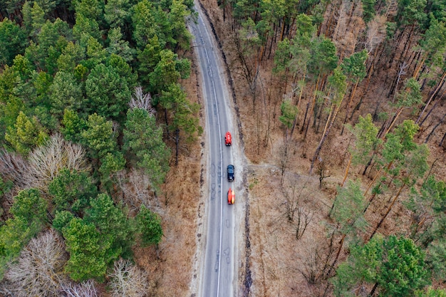 木の中で道路を運転するルーフラックにカヤックを持ついくつかの車