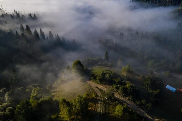 美しい秋の日の朝の霧に包まれたカラフルな混交林の空撮