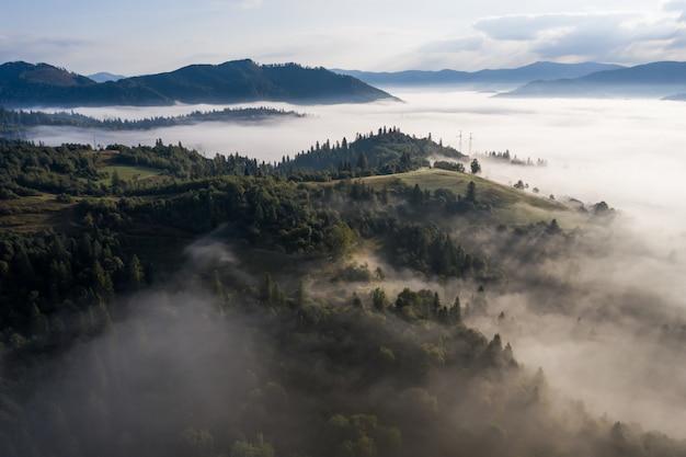 朝の霧に包まれた森の空撮