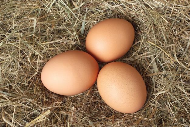 干し草の巣に鶏の卵