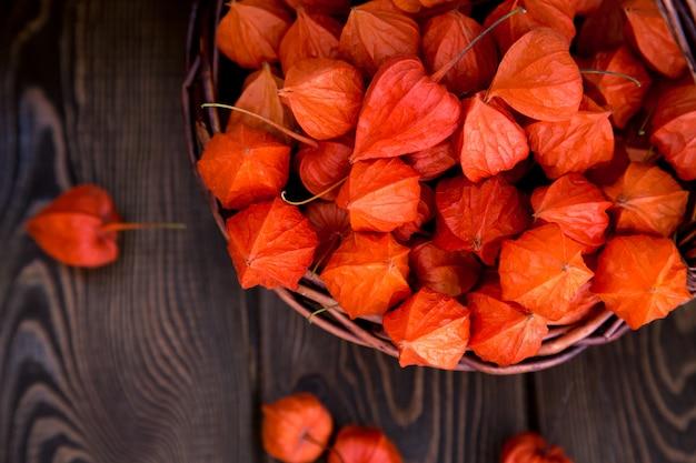 秋の背景。茶色の木質の背景に明るいオレンジサイサリス果実。