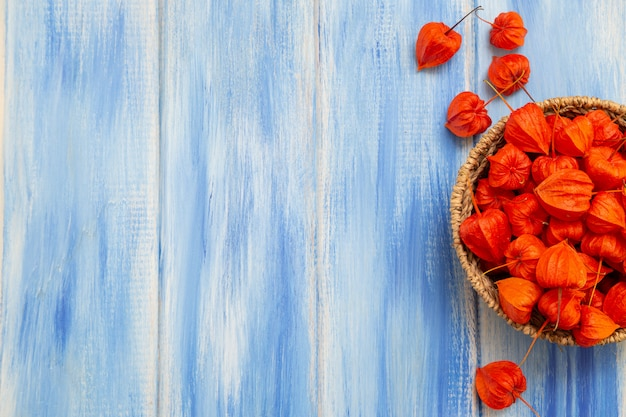 Ярко-оранжевые ягоды физалиса на голубом древесном столе
