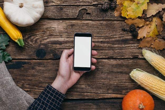 秋野菜:男性の手、カボチャ、木の上のトウモロコシの白い空の画面を持つ携帯電話
