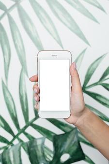 女性の手が葉の上の白い画面で携帯電話を保持します。