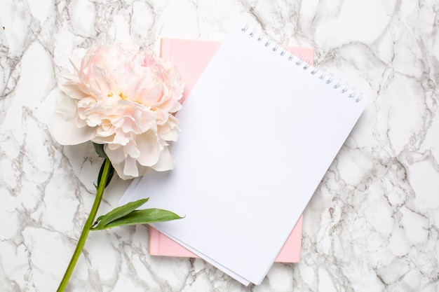 美しいパステルピンクの牡丹の花と大理石の背景にノートブック。女性の営業日
