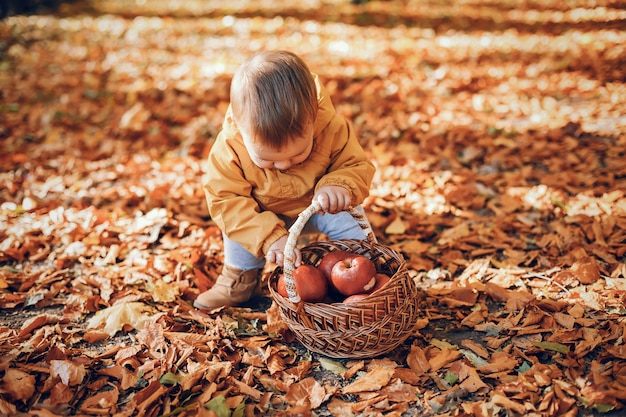秋の公園で座っている小さな男の子