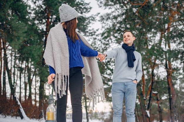 冬の森のかわいい、愛情のあるカップル