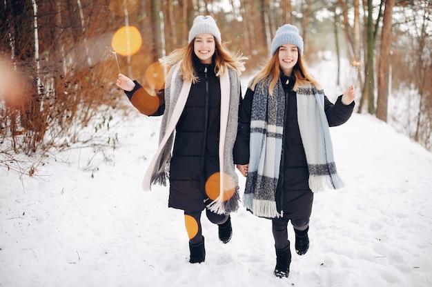 Две милые девушки в зимнем парке