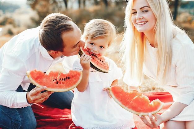 夏の公園で遊ぶかわいい家族