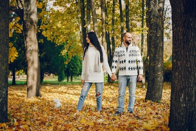 美しいカップルは秋の公園で過ごす