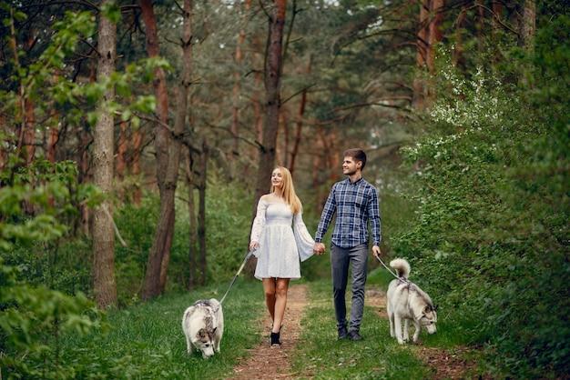 犬と夏の森の中の美しいカップル