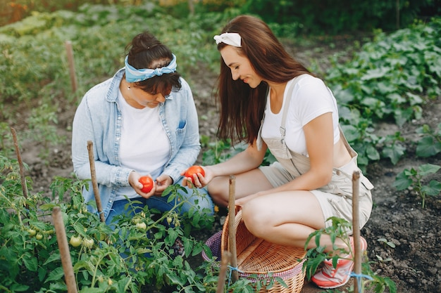 美しい女性は庭で働いています