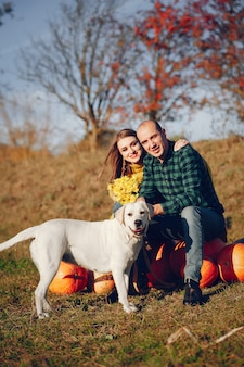 美しいカップルは、秋の公園で時間を過ごす