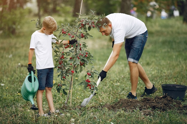 Отец с маленьким сыном сажают дерево на дворе
