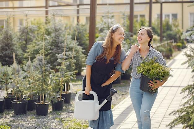 植木鉢のある温室で働く女性