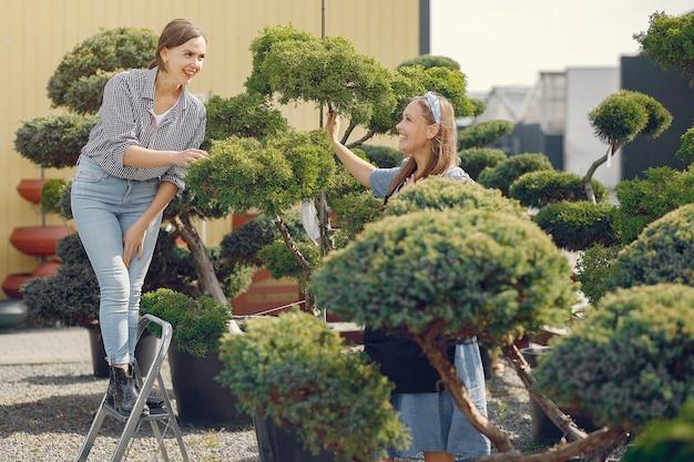 緑の木々のある温室で働く女性